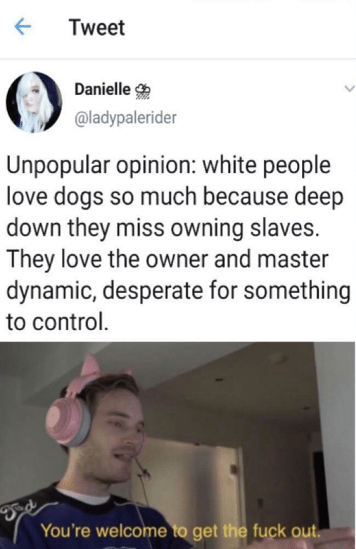 Desperate, Dogs, and Love: Tweet  Danielle  @ladypalerider  Unpopular opinion: white people  love dogs so much because deep  down they miss owning slaves.  They love the owner and master  dynamic, desperate for something  to control  You're welcome to get the fuck out.