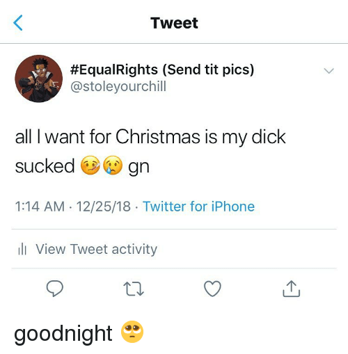 Christmas, Iphone, and Twitter: Tweet  #Equa!Rights (Send tit pics)  @stoleyourchill  all I want for Christmas is my dick  sucked e gn  1:14 AM -12/25/18 Twitter for iPhone  ili View Tweet activity goodnight 🥺