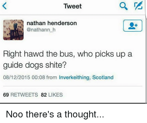 guid: Tweet  nathan henderson  @nat hann h  Right hawd the bus, who picks up a  guide dogs shite?  08/12/2015 00:08 from Inverkeithing, Scotland  69  RETWEETS  82  LIKES Noo there's a thought...
