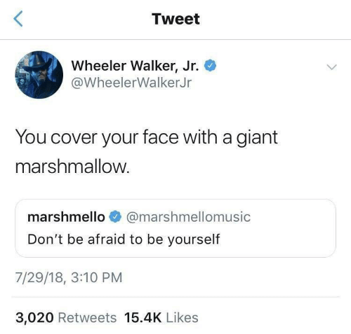 Cover: Tweet  Wheeler Walker, Jr.  @WheelerWalkerJr  You cover your face with a giant  marshmallow.  marshmello  @marshmellomusic  Don't be afraid to be yourself  7/29/18, 3:10 PM  3,020 Retweets 15.4K Likes