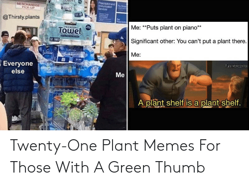 plant: Twenty-One Plant Memes For Those With A Green Thumb