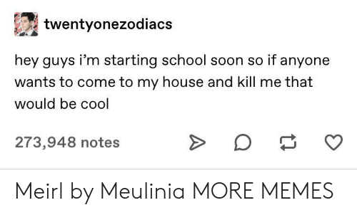 That Would Be: twentyonezodiacs  hey guys i'm starting school soon so if anyone  wants to come to my house and kill me that  would be cool  273,948 notes Meirl by Meulinia MORE MEMES