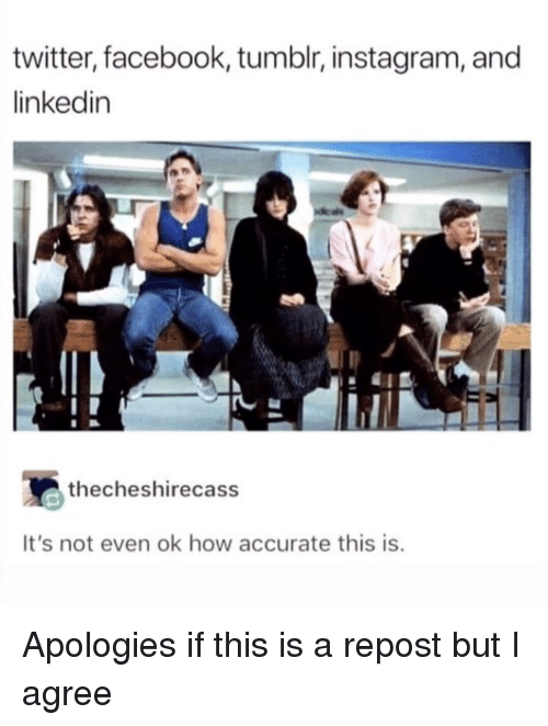 LinkedIn: twitter, facebook, tumblr, instagram, and  linkedin  thecheshirecass  It's not even ok how accurate this is Apologies if this is a repost but I agree