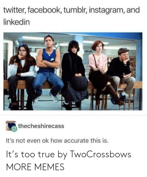 LinkedIn: twitter, facebook, tumblr, instagram, and  linkedin  thecheshirecass  It's not even ok how accurate this is. It's too true by TwoCrossbows MORE MEMES
