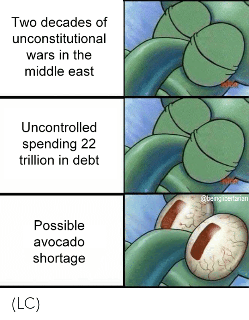 Memes, Avocado, and The Middle: Two decades of  unconstitutional  wars in the  middle east  Uncontrolled  spending 22  trillion in debt  Possible  avocado  shortage (LC)