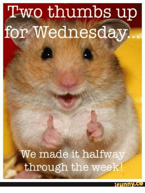 thumb ups: Two thumbs up  for Wednesday.  We made it halfway  through the week!  funny