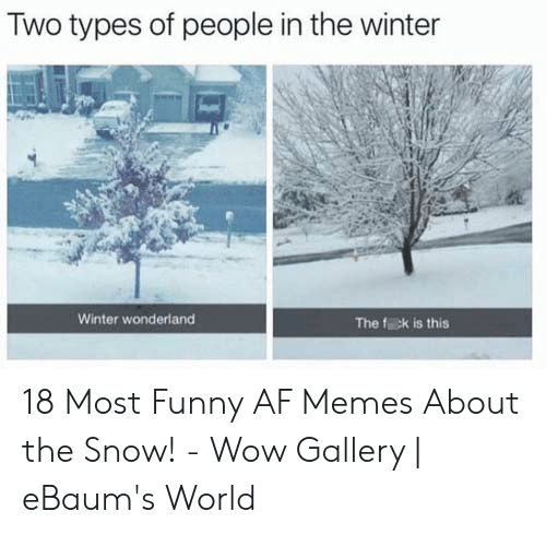 Af, Funny, and Memes: Two types of people in the winter  Winter wonderland  The fick is this 18 Most Funny AF Memes About the Snow! - Wow Gallery | eBaum's World