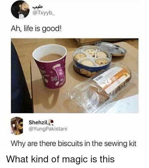 Life, Memes, and Good: @Txyyb  Ah, life is good!  Shehzil,  @YungPakistani  Why are there biscuits in the sewing kit What kind of magic is this