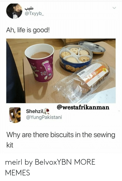 Dank, Life, and Memes: @Txyyb  Ah, life is good!  @westafrikanman  Shehzil,  @YungPakistani  Why are there biscuits in the sewing  kit meirl by BelvoxYBN MORE MEMES