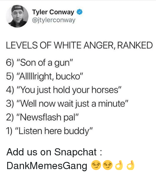 "Conway: Tyler Conway  @jtylerconway  LEVELS OF WHITE ANGER, RANKED  6) ""Son of a gun""  5) ""Allllright, bucko""  4) ""You just hold your horses""  3) ""Well now wait just a minute""  2) ""Newsflash pal'  1) ""Listen here buddy"" Add us on Snapchat : DankMemesGang 😏😏👌👌"