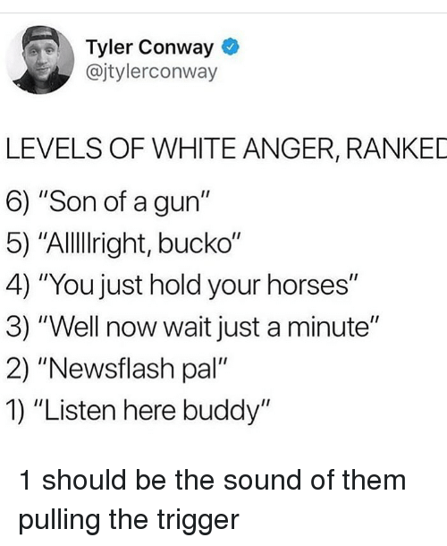 "Conway: Tyler Conway  @jtylerconway  LEVELS OF WHITE ANGER, RANKED  6) ""Son of a gun""  5) ""AlllIright, bucko""  4) ""You just hold your horses""  3) ""Well now wait just a minute""  2) ""Newsflash pal""  1) ""Listen here buddy"" 1 should be the sound of them pulling the trigger"