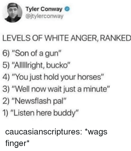 "Conway: Tyler Conway  @jtylerconway  LEVELS OF WHITE ANGER, RANKED  6) ""Son of a gun""  5) ""Allillright, bucko""  4) ""You just hold your horses""  3) ""Well now wait just a minute""  2) ""Newsflash pal""  1) ""Listen here buddy'"" caucasianscriptures:  *wags finger*"
