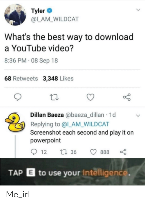 youtube.com, Best, and Powerpoint: Tyler  @L_AM_WILDCAT  What's the best way to download  a YouTube video?  8:36 PM 08 Sep 18  68 Retweets 3,348 Likes  Dillan Baeza @baeza_dillan 1d  Replying to @l_AM_WILDCAT  Screenshot each second and play it  powerpoint  t36  888  12  TAP E to use your Intelligence. Me_irl