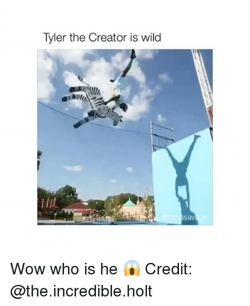 wows: Tyler the Creator is wild  sav Wow who is he 😱 Credit: @the.incredible.holt