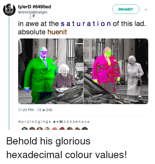 The S: tylerD #6495ed  INHABIT  @Ahhhbbhthelight  in awe at the s aturation of this lad.  absolute huenit  11:24 PM-13 æ 245  -iprolongings a +bi consensus Behold his glorious hexadecimal colour values!