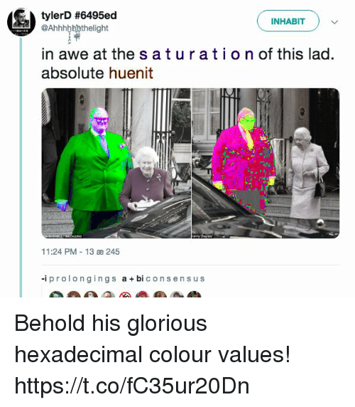 The S: tylerD #6495ed  INHABITv  @Ahhhbbhthelight  in awe at the s aturatio n of this lad.  absolute huenit  11:24 PM 13 æ 245  -iprolongings abi consen s us Behold his glorious hexadecimal colour values! https://t.co/fC35ur20Dn