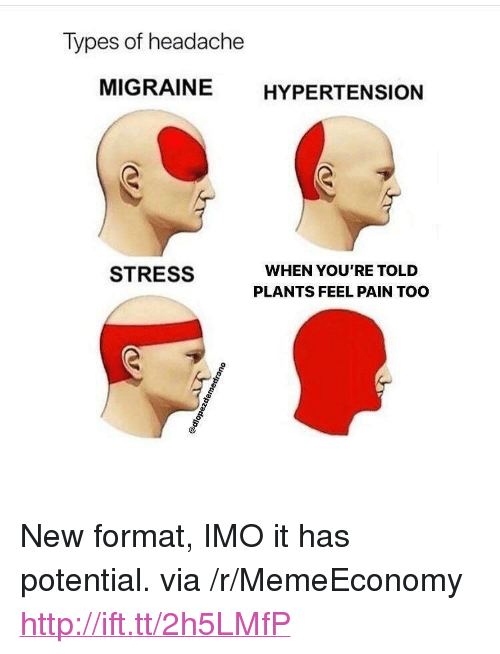 "Http, Migraine, and Pain: Types of headache  MIGRAINE HYPERTENSION  WHEN YOU'RE TOLD  PLANTS FEEL PAIN TOO  STRESS <p>New format, IMO it has potential. via /r/MemeEconomy <a href=""http://ift.tt/2h5LMfP"">http://ift.tt/2h5LMfP</a></p>"