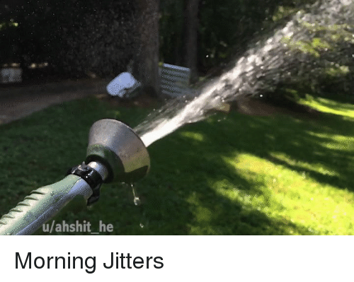 Flowers, Morning, and Jitters: u/ahshit_ he Morning Jitters