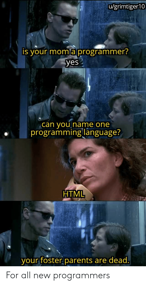 Parents, Moma, and Programming: u/grimtiger10  is your moma programmer?  yes  you  programming language?  can  Iname one  HTML  your foster parents  are dead. For all new programmers