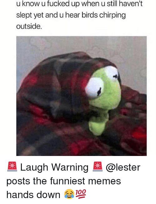 The Funniest Memes: u know u fucked up when u still haven't  slept yet and u hear birds chirping  outside. 🚨 Laugh Warning 🚨 @lester posts the funniest memes hands down 😂💯