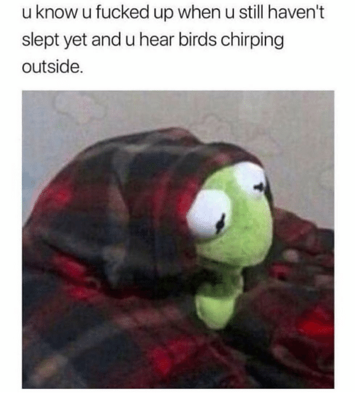 Chirping: u know u fucked up when u still haven't  slept yet and u hear birds chirping  outside.