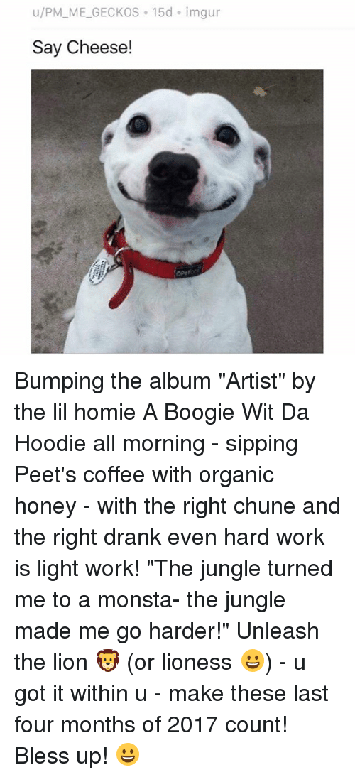 """lighted: u/PM_ME_GECKOS 15d imgur  Say Cheese! Bumping the album """"Artist"""" by the lil homie A Boogie Wit Da Hoodie all morning - sipping Peet's coffee with organic honey - with the right chune and the right drank even hard work is light work! """"The jungle turned me to a monsta- the jungle made me go harder!"""" Unleash the lion 🦁 (or lioness 😀) - u got it within u - make these last four months of 2017 count! Bless up! 😀"""