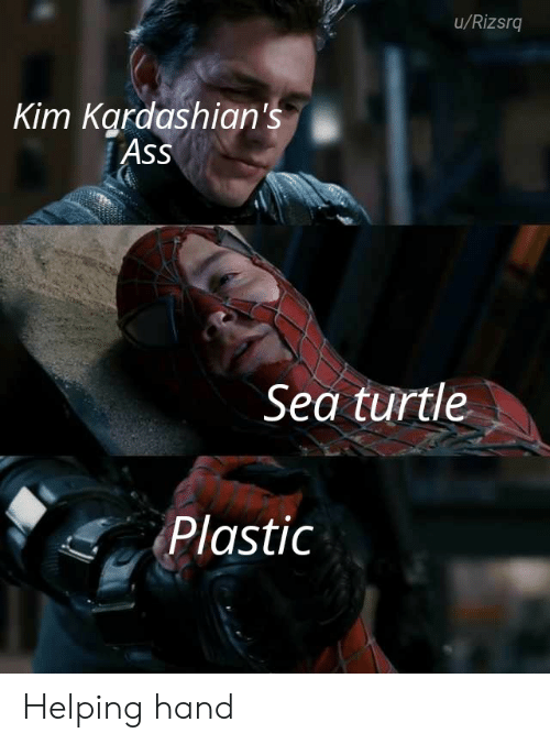 Ass, Kardashians, and Turtle: u/Rizsrq  Kim Kardashian's  Ass  Sea turtle  Plastic Helping hand