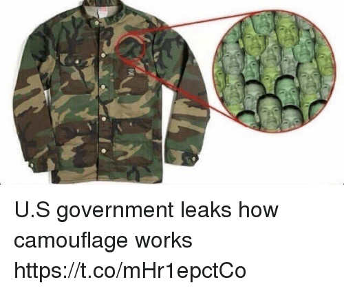Memes, Government, and 🤖: U.S government leaks how camouflage works https://t.co/mHr1epctCo