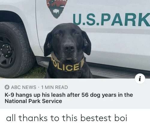 National: U.S.PARK  OLICE  ABC NEWS 1 MIN READ  K-9 hangs up his leash after 56 dog years in the  National Park Service all thanks to this bestest boi