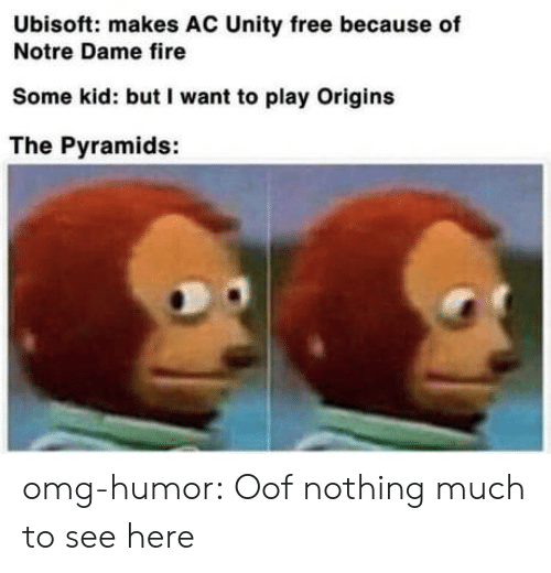 Fire, Omg, and Tumblr: Ubisoft: makes AC Unity free because of  Notre Dame fire  Some kid: but I want to play Origins  The Pyramids: omg-humor:  Oof nothing much to see here