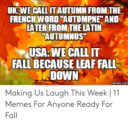 "Fall Meme: UK: WE CALL UT AUTUMN FROM THIE  FRENCH WORD ""AUTOMPNE"" AND  LATER FROM THELATIN  AUTUMNUS  USA: WE CALL IT  FALL BECAUSE LEAF FALL  DOWN  memes.com Making Us Laugh This Week 