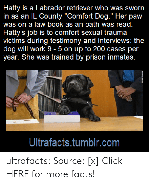 comfort: ultrafacts: Source: [x] Click HERE for more facts!