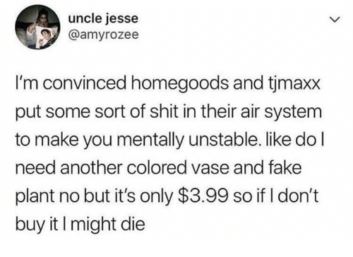 Fake, Shit, and Another: uncle jesse  @amyrozee  I'm convinced homegoods and tjmaxx  put some sort of shit in their air system  to make you mentally unstable. like do l  need another colored vase and fake  plant no but it's only $3.99 so if I don't  buy it I might die