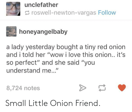 """Love, Tumblr, and Wow: unclefather  S roswell-newton-vargas Follow  honeyangelbaby  a lady yesterday bought a tiny red onion  and i told her """"wow i love this onion.. it's  so perfect"""" and she said """"you  understand me...""""  8,724 notes Small Little Onion Friend."""