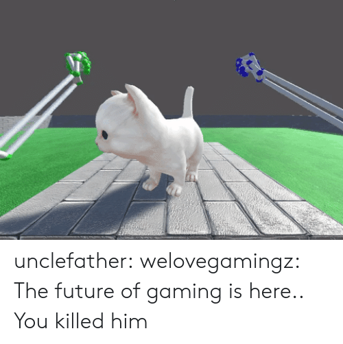 Future, Tumblr, and Blog: unclefather:  welovegamingz: The future of gaming is here..  You killed him