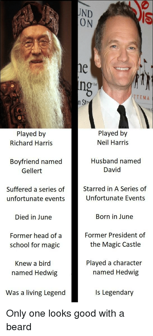 richard harris: UND  ON  IS  ne  ng  SM  TTEMA  n Sta  Played by  Richard Harris  Played by  Neil Harris  Boyfriend named  Husband named  Gellert  David  Starred in A Series of  Unfortunate Events  Suffered a series of  unfortunate events  Died in June  Former head of a  Born in June  Former President of  the Magic Castle  school for magic  Played a character  named Hedwig  Knew a bird  named Hedwig  Was a living Legend  Is Legendary