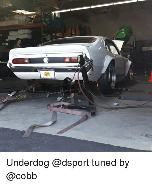 Memes, 🤖, and Underdog: Underdog @dsport tuned by @cobb
