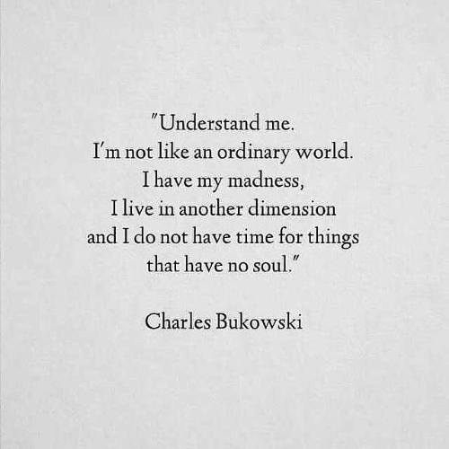 """madness: Understand me.  I'm not like an ordinary world  I have my madness  I live in another dimension  and I do not have time for things  that have no soul.""""  Charles Bukowski"""