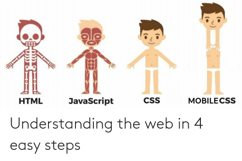web: Understanding the web in 4 easy steps
