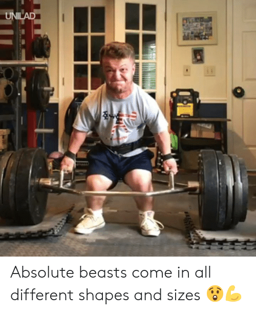 shapes: UNILAD Absolute beasts come in all different shapes and sizes 😲💪
