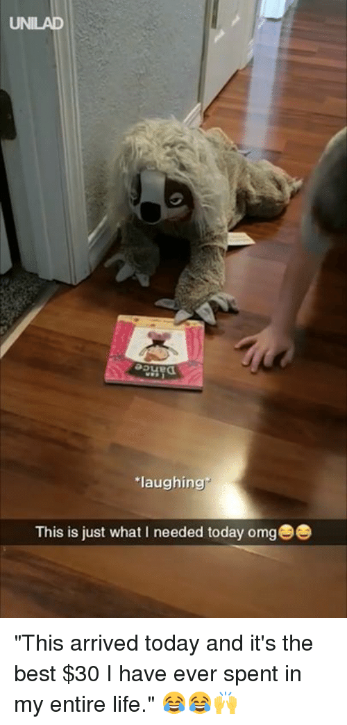 """Dank, Life, and Omg: UNILAD  aue  laughing  This is just what I needed today omg """"This arrived today and it's the best $30 I have ever spent in my entire life."""" 😂😂🙌"""