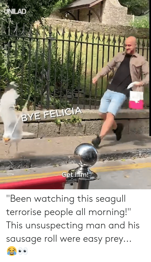 """Bye Felicia, Dank, and Been: UNILAD  BYE FELICIA  Get him! """"Been watching this seagull terrorise people all morning!"""" This unsuspecting man and his sausage roll were easy prey... 😂👀"""