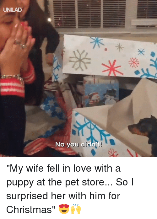 """Christmas, Dank, and Love: UNILAD  No you di """"My wife fell in love with a puppy at the pet store... So I surprised her with him for Christmas"""" 😍🙌"""