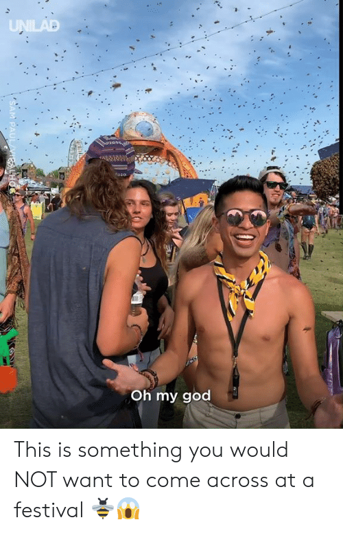 Dank, God, and Oh My God: UNILAD  Oh my god  PAUL VIEALHO This is something you would NOT want to come across at a festival 🐝😱