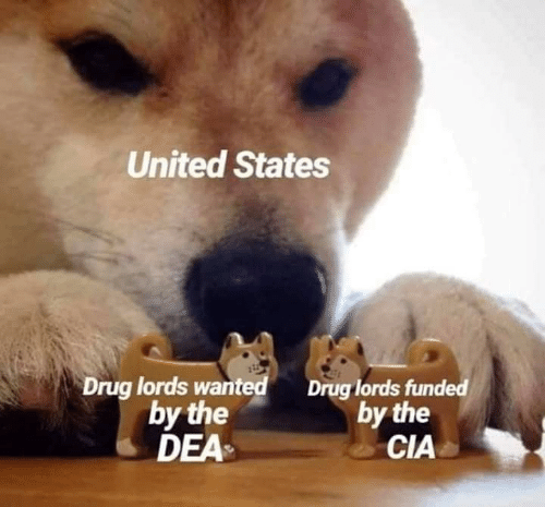 drug lords: United States  Drug lords wan  by the  DEA  Drug lords funded  by the  CIA