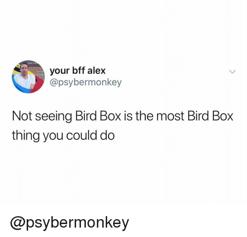 Dank Memes, Box, and Alex: UNIVE  your bff alex  @psybermonkey  STEPHE  RUB  Not seeing Bird Box is the most Bird Box  thing you could do @psybermonkey
