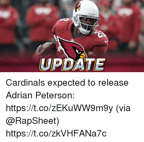 Adrian Peterson, Memes, and Cardinals: UPDATE Cardinals expected to release Adrian Peterson: https://t.co/zEKuWW9m9y (via @RapSheet) https://t.co/zkVHFANa7c