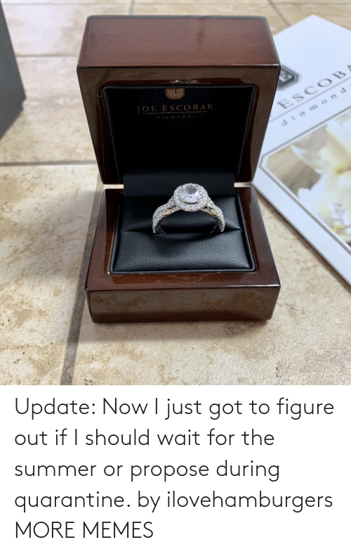 During: Update: Now I just got to figure out if I should wait for the summer or propose during quarantine. by ilovehamburgers MORE MEMES
