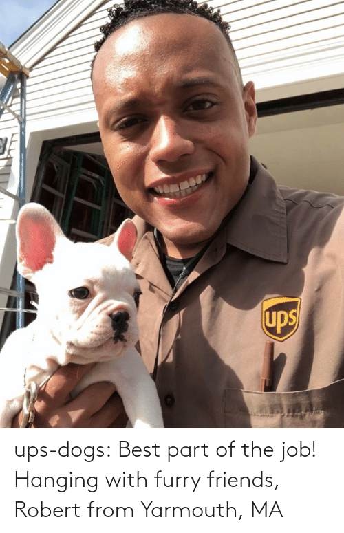 hanging: ups-dogs:  Best part of the job! Hanging with furry friends, Robert from Yarmouth, MA