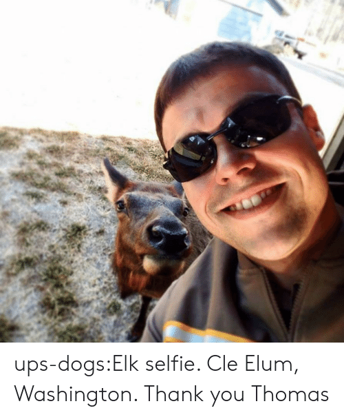 Dogs, Selfie, and Target: ups-dogs:Elk selfie. Cle Elum, Washington. Thank you Thomas